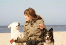 Hundehalterin mit zwei Hunden