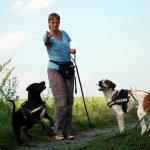 Beziehungsänderung zwischen Halter und Hund