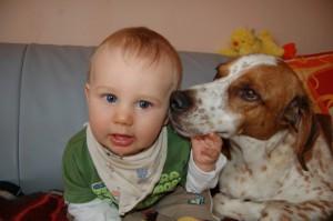 Hund schleckt Baby