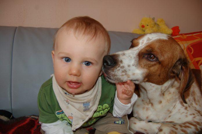Baby und Hund, Foto: Melanie