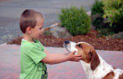 Kind und Hund, Foto: Melanie