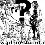 Mensch – Hundhalter, Hundehalter – Mensch
