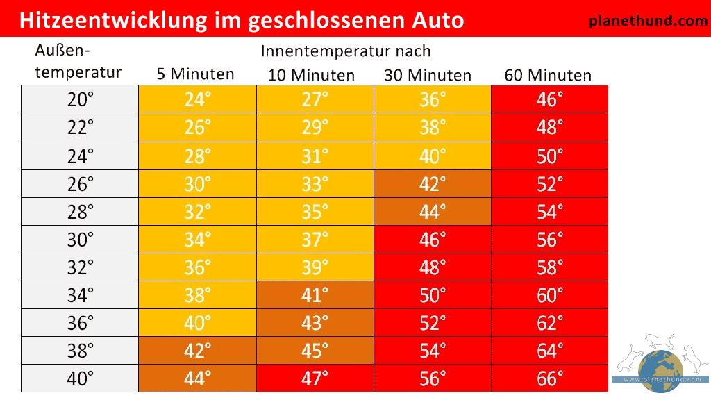 Die Grafik zeigt die Hitzeentwicklung in einem geschlossenen Auto abhängig von der Außentemperatur. Hat es draußen ab 20 Grad, droht dem eingeschlossenem Hund im Auto bereits der Tod!