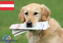 Planet Hund News Österreich