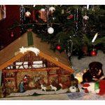 Kein Hund als Geschenk unter dem Weihnachtsbaum – Eine Weihnachtsgeschichte