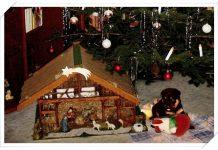 Kein Hund als Geschenk unter dem Weihnachtsbaum