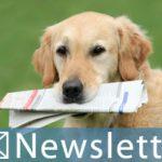Planet Hund Newsletter