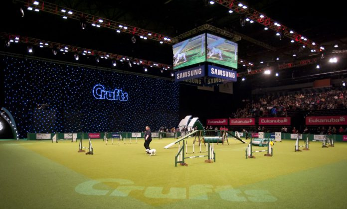 Crufts Dog Show 2013, Fotocredits: onEdition