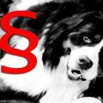 Härterer Strafen für Tierquäler