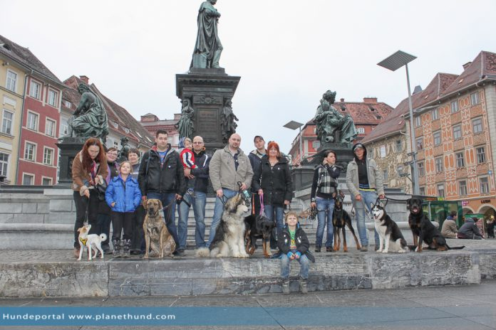 The Walk in Graz 2013
