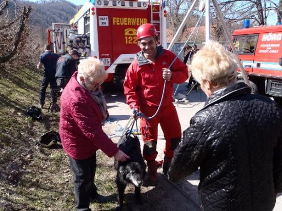 Hunde Rettung Wasserkanal Andritz