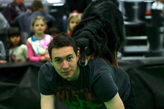 Dogdance Haustiermesse Wels