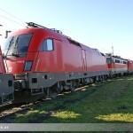 Zugführer rettet Welpen durch Notbremsung in Kalifornien