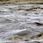 Hund und Herrchen verschwanden im Hochwasser in Oberpfalz