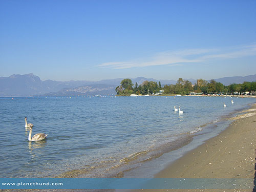 hundestrand bau beach am gardasee la spiaggia di. Black Bedroom Furniture Sets. Home Design Ideas