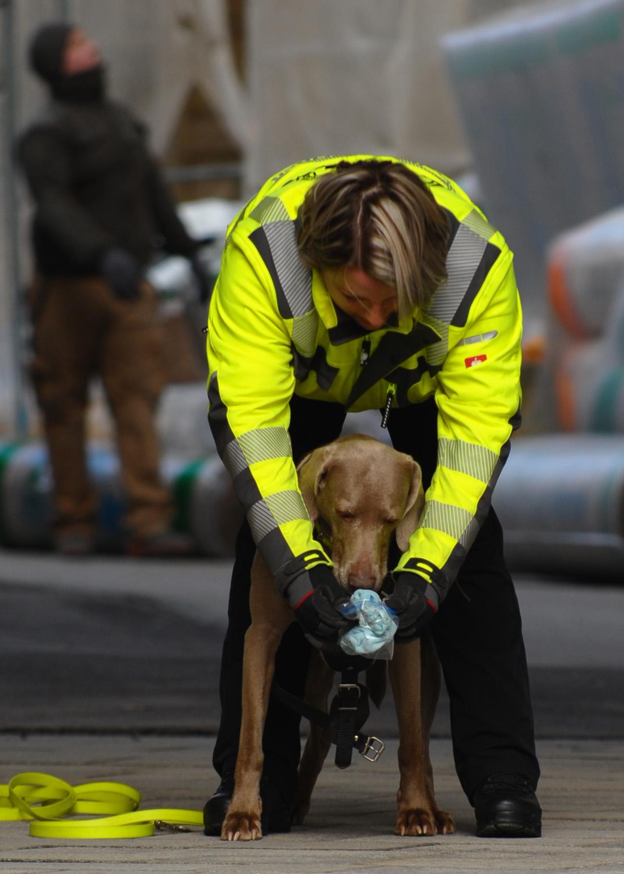 Maintrailing Hundeführerin mit Hund