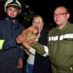 Feuerwehreinsatz: Hund steckte in Zaun fest