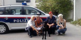 Polizeieinsatz misshandelter Hund