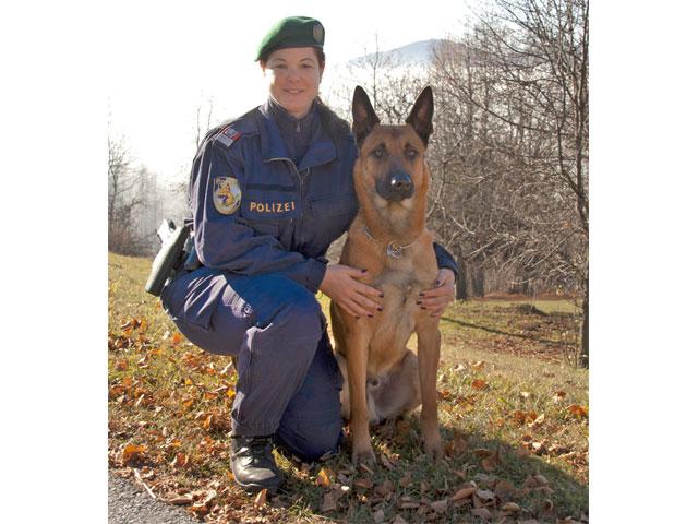 polizeihund-porsche