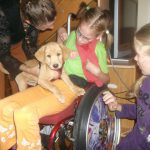 Hund und behindertes Kind