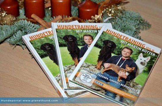 Martin Rütter DVDs