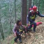 Tierischer Einsatz für die Bergrettung Hermagor in Kärnten: Hund stürzte 200 Meter in die Tiefe