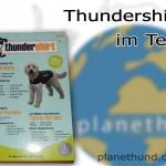 Thundershirt gegen Angst bei Hunden im Test