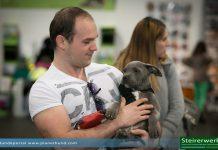 Internationale Hundeausstellung 2014 in Graz