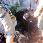 Klettern Hund Seilrolle Kroatien