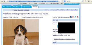 Welpenhandel Online Inserate