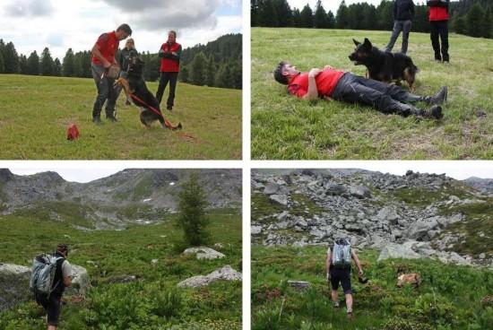 Bergrettung Steiermark Suchhundelehrgang