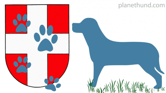 Hunde Wien Symbolbild
