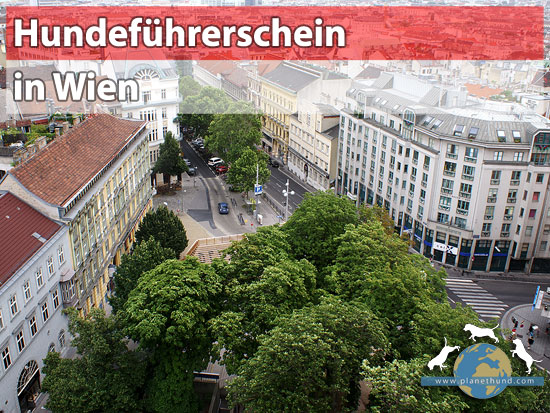 Hundeführerschein Wien