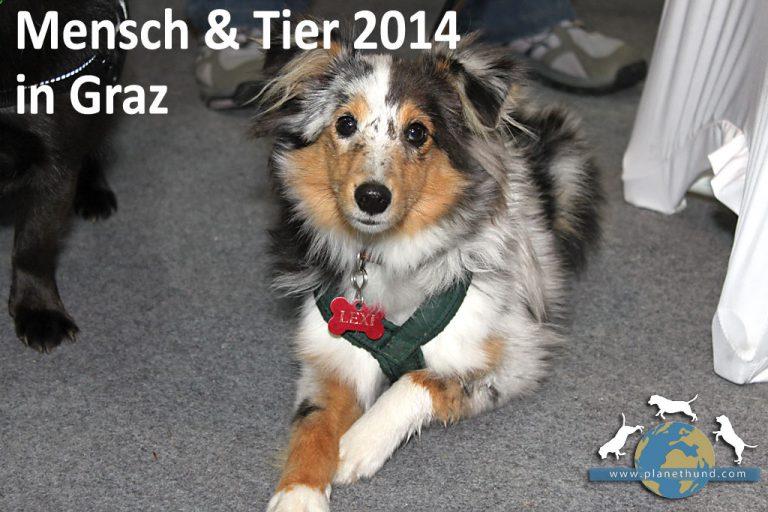 Mensch & Tier 2014: Tiermesse vom 11. bis 12. Oktober in Graz