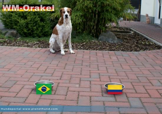 Gastgeber Brasilien gegen Kolumbien im Viertelfinale