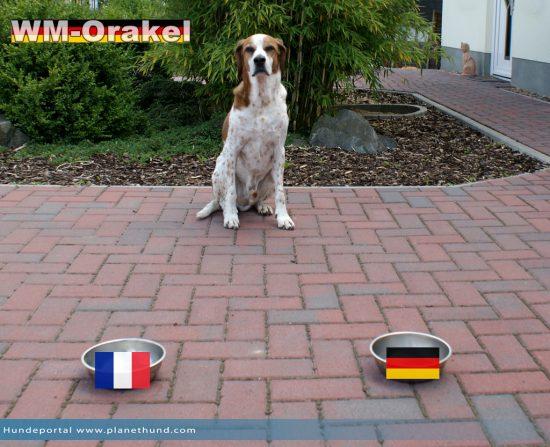 Frankreich vs Deutschland - das erste Viertelfinal-Spiel