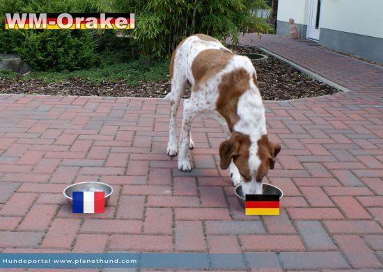 Gewinner im Viertelfinale: Deutschland!