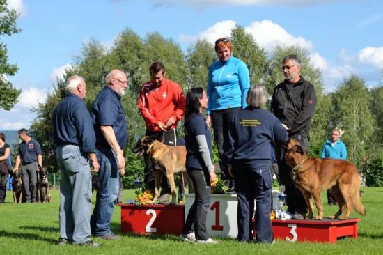Rettungshunde Staatsmeisterschaft Sieger Rohrbach