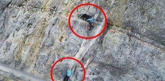 Bergrettung Hubschrauber von zwei Wanderinnen Berner Sennenhund
