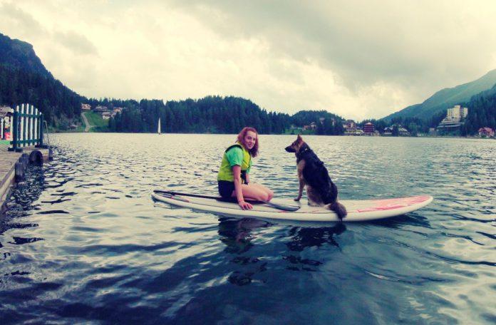 Hunde Seehotel Jägerwirt Turracher Höhe
