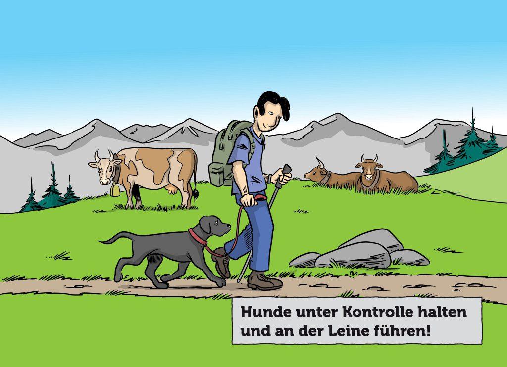 wandern hund weidetiere