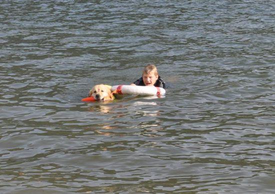 Hund Rettung Person