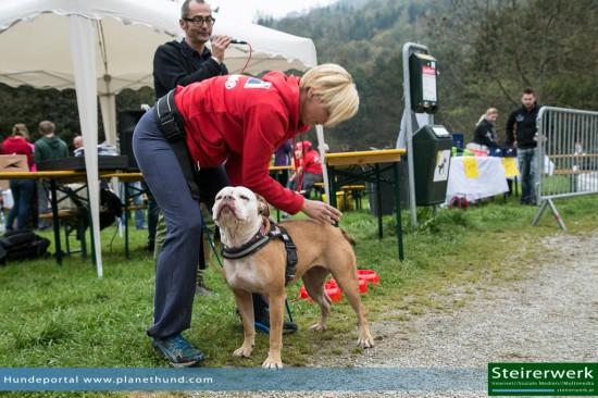 Hund Sabine Struckl