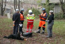 ASB Berlin IRO Rettungshunde