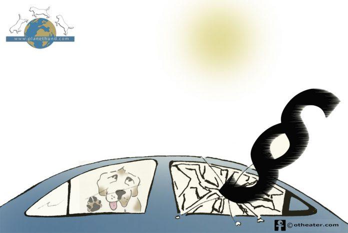 Autoscheibe einschlagen Hund Recht