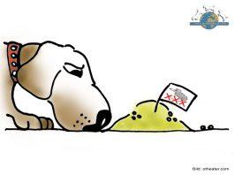 Rattengift Hunde Vergiftung