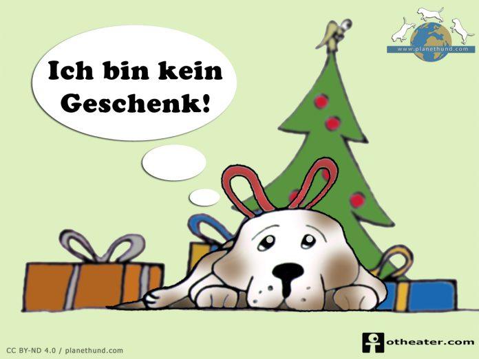 Tiere Weihnachten Geschenk