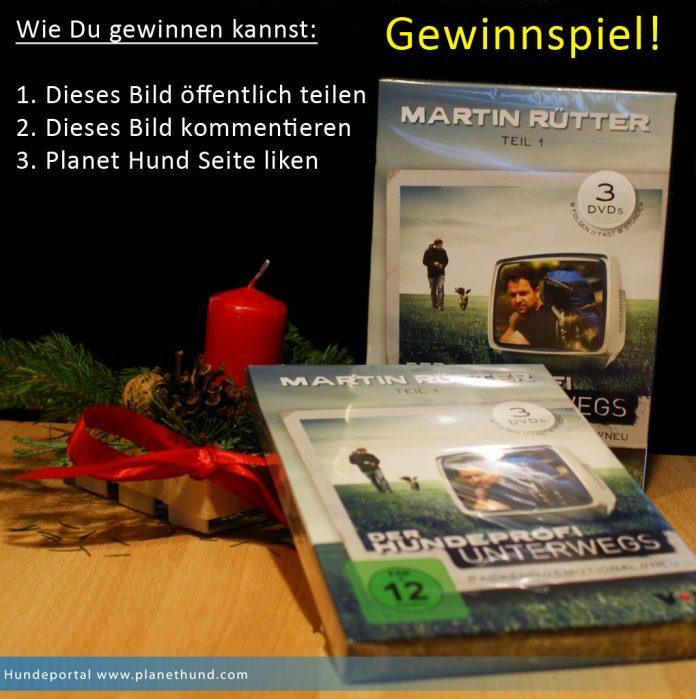 Gewinnspiel DVD Martin Rütter