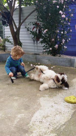 Kind spielt Hund