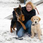 ÖKV Hundeschulen starten nach Winterpause wieder durch